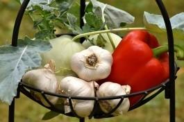 Kertészkedés a Holddal A növények asztrológiai besorolása Artemisz Asztrológia Iskola Debrecen