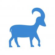 Bak csillagjegyűek tulajdonságai Artemisz Asztrológia Debrecen