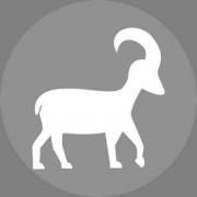 Bak csillagjegy Artemisz Asztrológia Iskola Debrecen
