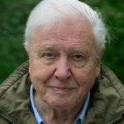 David Attenborough Bika csillagjegy Artemisz Asztrológia Debrecen
